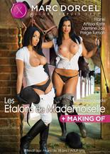 Xillimité - Les Etalons de Mademoiselle - Film Porno