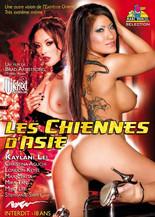 Xillimité - Les chiennes d'Asie - Film Porno